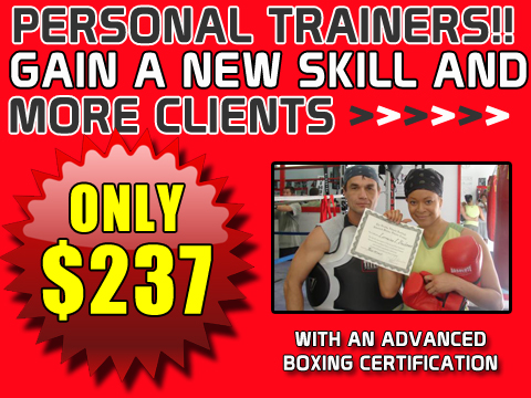 Boxing Certification Institute for Fitness Professionals